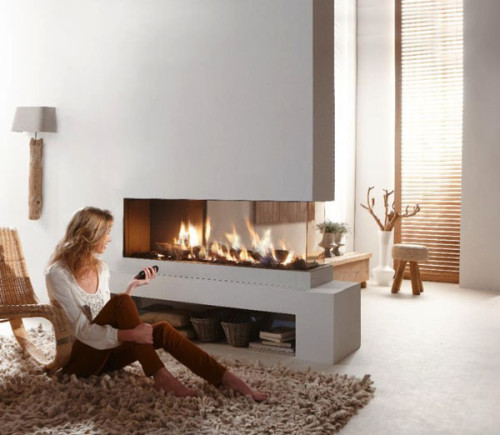 Contemporary-dual-aspect-fireplace